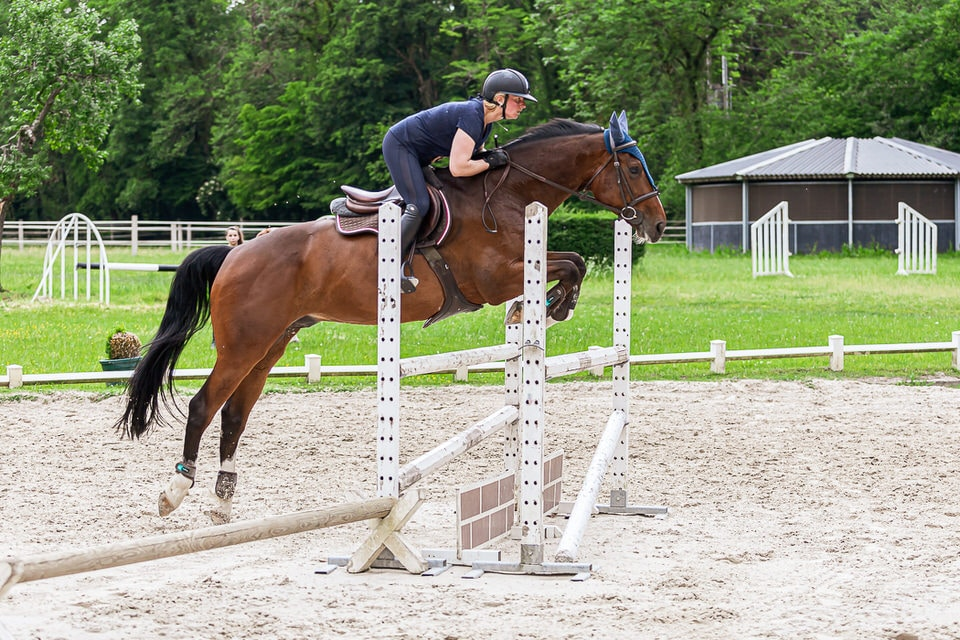 Emilie André SEGURA_HORSE_TEAM