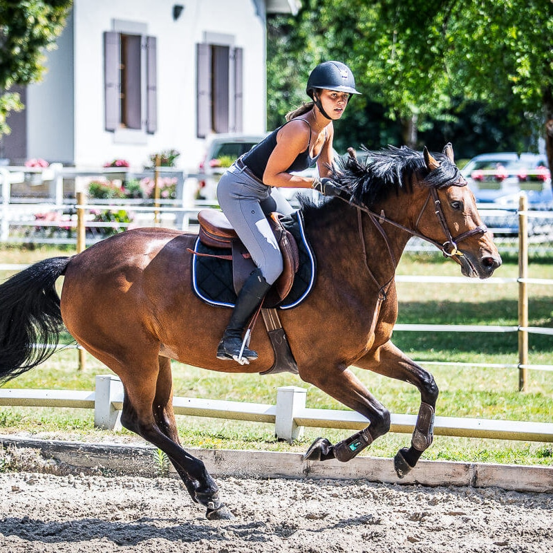 SEGURA HORSE TEAM 2020