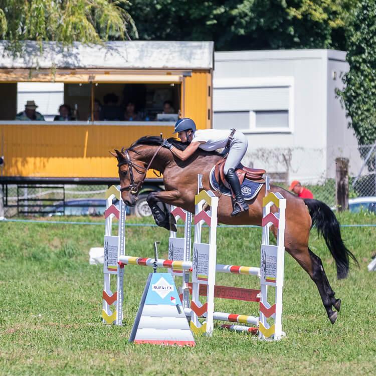 Patricia Segura - Segura Horse Team